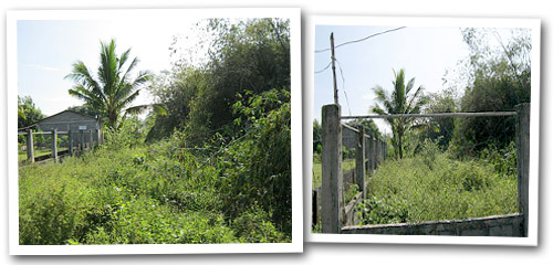 Candon Philippines  city images : ... Lot for Sale Code: RL 1077 Candon City, Ilocos Sur, Philippines